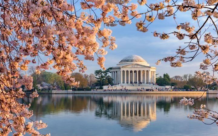 Washington DC Holidays